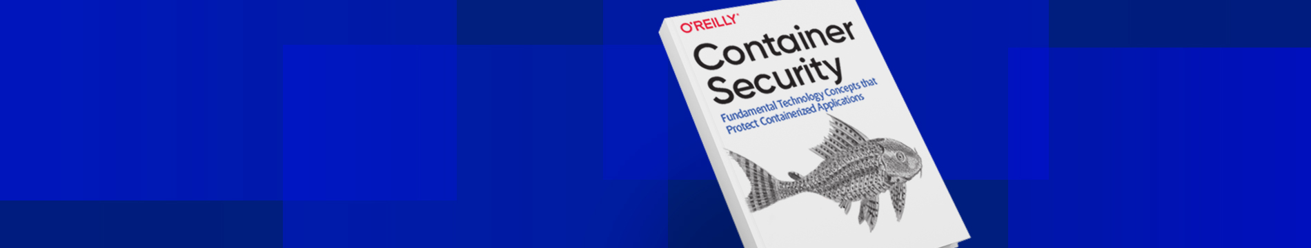 OReilly Book Container Security